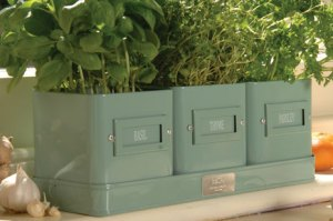Burgon and Ball herb pots