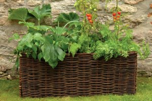 Burgon and Ball vegetable planter